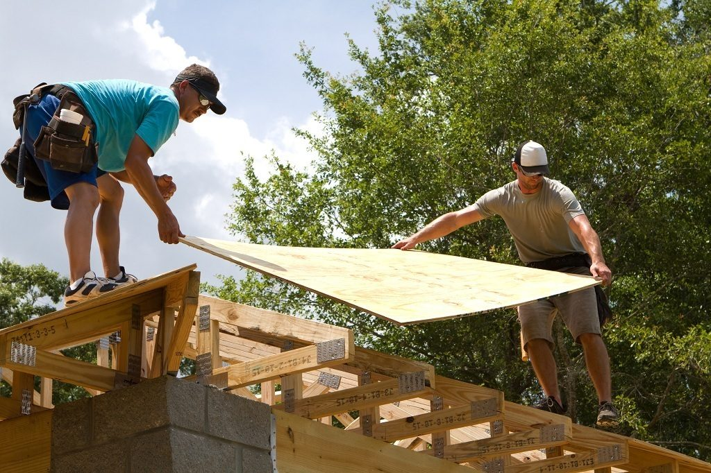 cdx, board, roof, panel, man, carry, house, beams, hat, woodworkers, adults, blue collar, builders, building, carpenters, construction, craftsmen, home, housing, industrial, industry, laborers, males, manual, men, new, plywood, rafters, roofers, sheathing, site, tools, trusses, wood, workers, working
