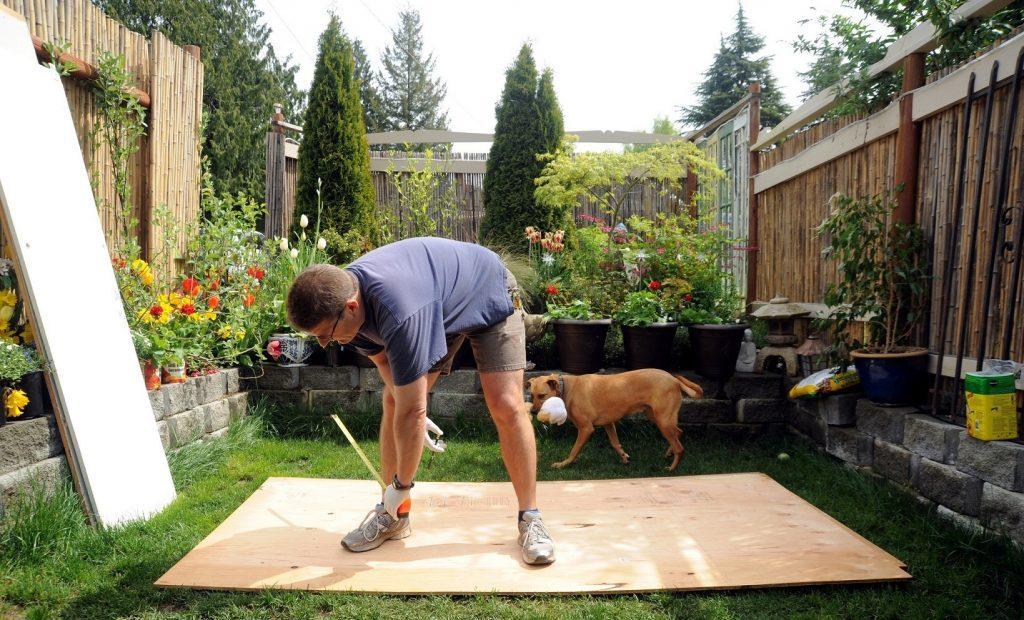 garden, man, carpenter, woodworker, wood, plywood, grass, ball, flowers
