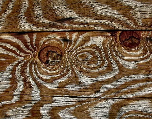 wood, lumber, grains, zebra, contrast