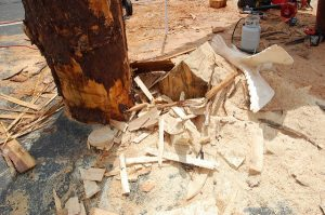 wood, debris, sawdust