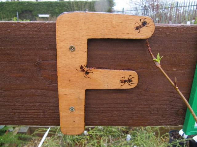 wooden, wood, letter, f