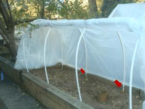 greenhouse, ridge pole