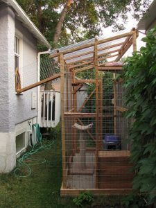 catio, cats, wooden, house