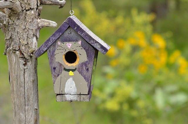 The Ultimate Guide To Diy Birdhouse Design Plywood Theplywood