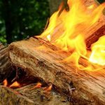 Drying Wood in the Oven: The Ultimate How-To Guide