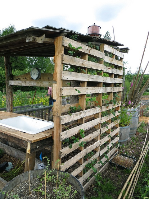 strawberry, pallets, garden, wood, growing