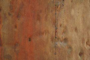 wood, sap, board