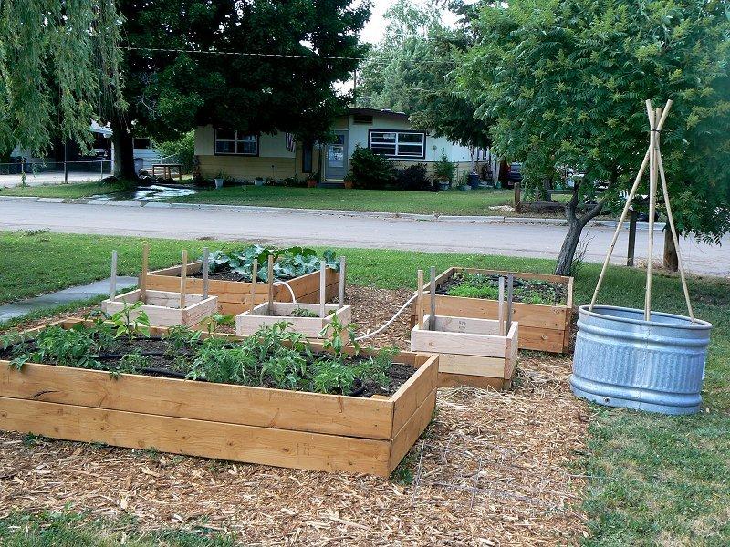 wooden garden trough